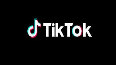 TikTok ऐप बंद, यूजर्स के पास वीडियो डाउनलोड करने का मौका, फॉलो करें ये टिप्स