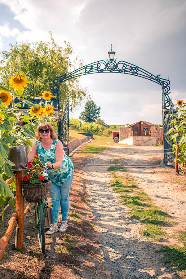 Magiczne polskie winnice - Winnica Kindler