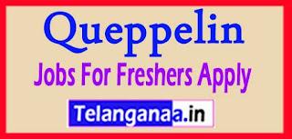 Queppelin Recruitment 2017 Jobs For Freshers Apply