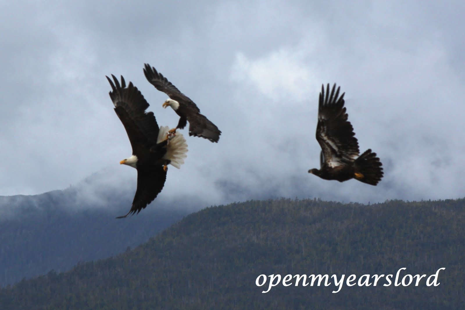 On Eagles Wings and Prayer