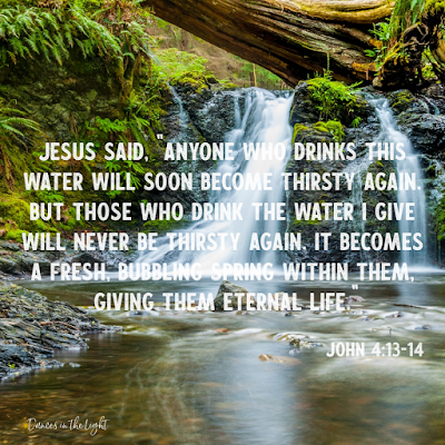 Anyone who drinks this water will soon become thirsty again. But those who drink the water I give will never be thirsty again. It becomes a fresh, bubbling spring within them, giving them eternal life.