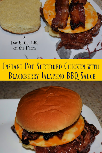 Instant Pot Shredded Chicken Sandwiches with Blackberry Jalapeno BBQ Sauce pin