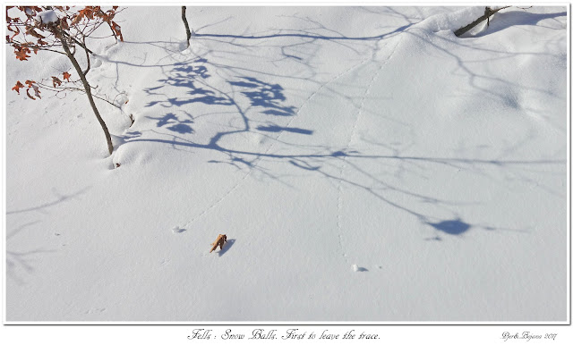 Fells: Snow Balls. First to leave the trace.