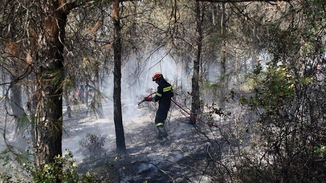 6 εκατ. ευρώ συνολικά από την Περιφέρεια Πελοποννήσου για την πυρόπληκτη περιοχή της Κορινθίας