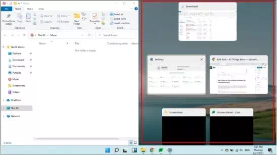 Cara Split Screen di Windows 11-6