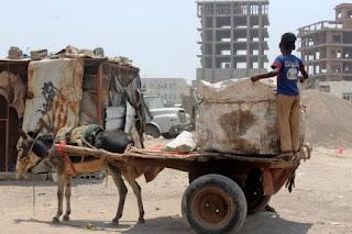 Krisis, Keledai Gantikan Fungsi Mobil di Yaman