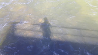 man standing on a pier, shadow reflected on water
