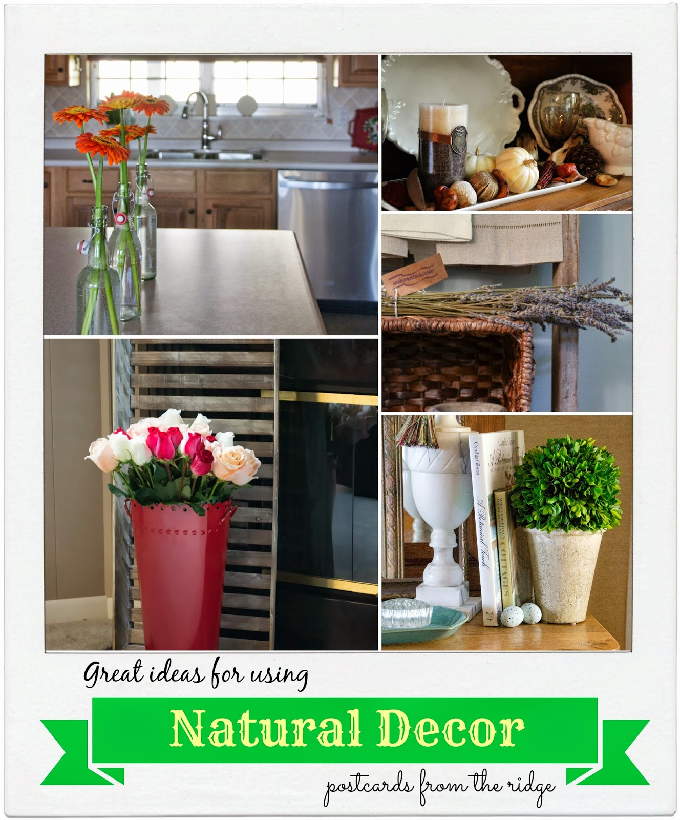 Tips For Using Natural Items For Home Decor