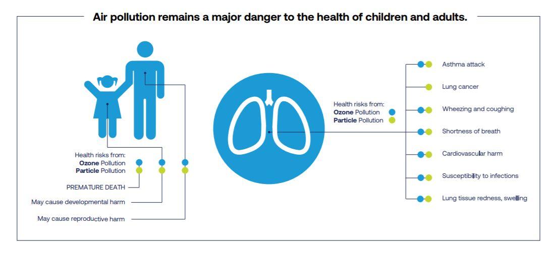 efecto contaminación pulmones