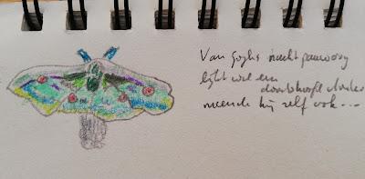 Tekening nachtpauwoog naar voorbeeld Van Gogh met haiku