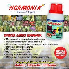 HORMONIK K