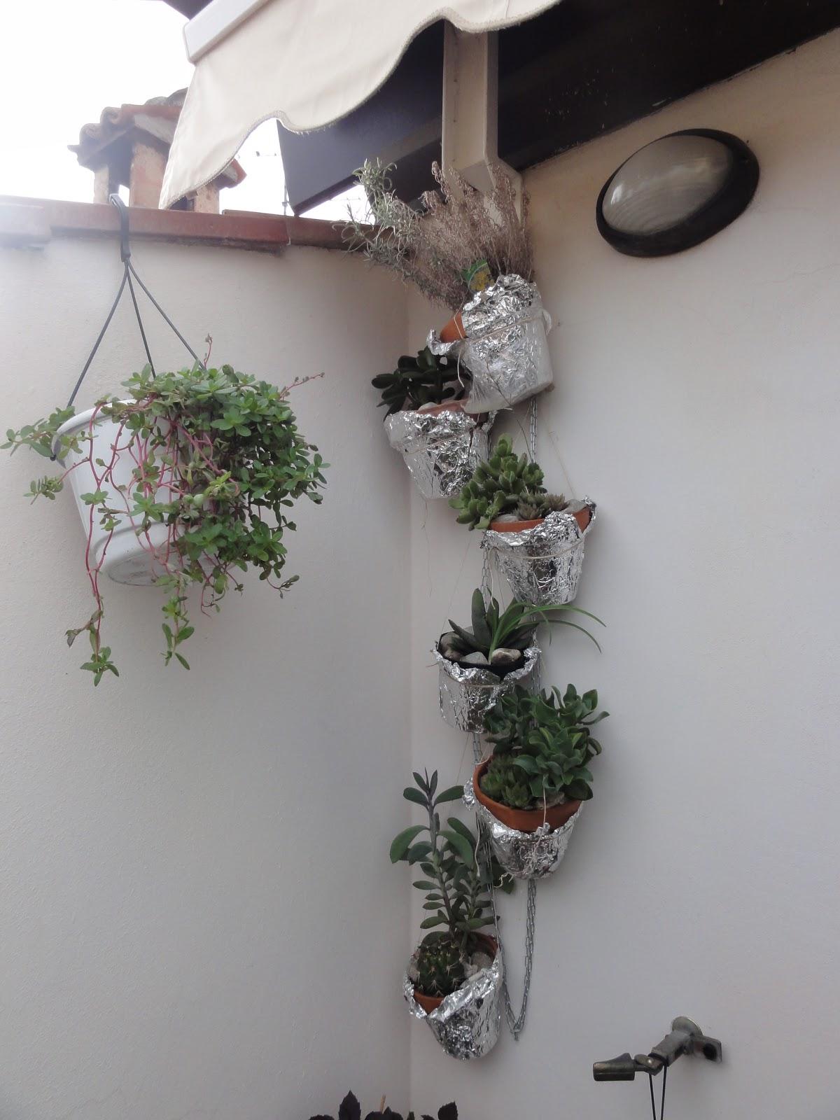 Aria di montagna piante grasse nel balcone for Piante per terrazzo
