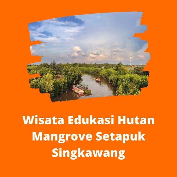Wisata Edukasi Hutan Mangrove Setapuk Singkawang
