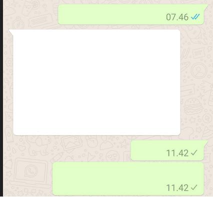 Status Pesan WhatsApp