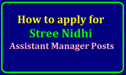 How to apply for Stree Nidhi Assistant Manager posts 2019,Apply online till June 15 /2019/06/how-to-apply-for-stree-nidhi-assistant-manager-posts-apply-online-streenidhi.telangana.gov.in.html