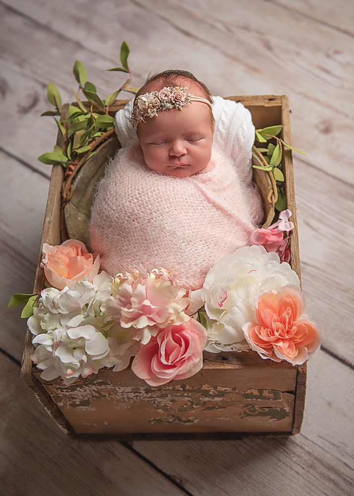 Best Newborn Photographer in DeKalb, IL  baby girl in pink with flowers