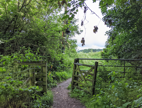 The start of Hunsdon footpath 17 - point 1