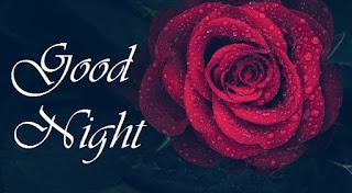 cute rainy good night images