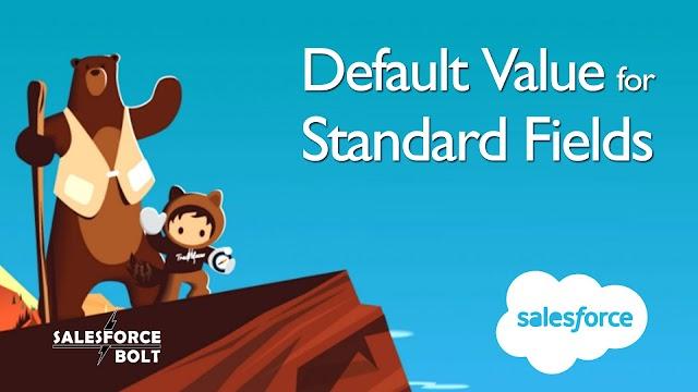 Default Value for Standard Fields in Salesforce