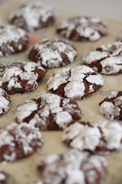 Chocolate Peppermint Crinkle Cookies | Tortillas and Honey