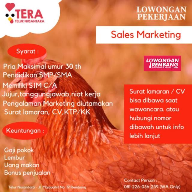 Lowongan Kerja Sales Marketing Telur Nusantara (Tera) Rembang