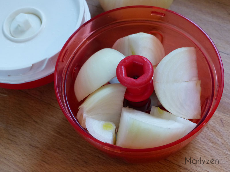Mixez les oignons (turbotup ici).