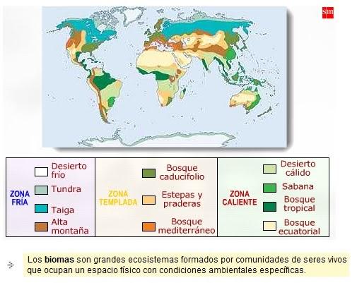 Colorear NiÑos Del Mundo: LAPICERO DE TERCERO : BIOMAS, BIOTOPO Y BIOCENOSIS