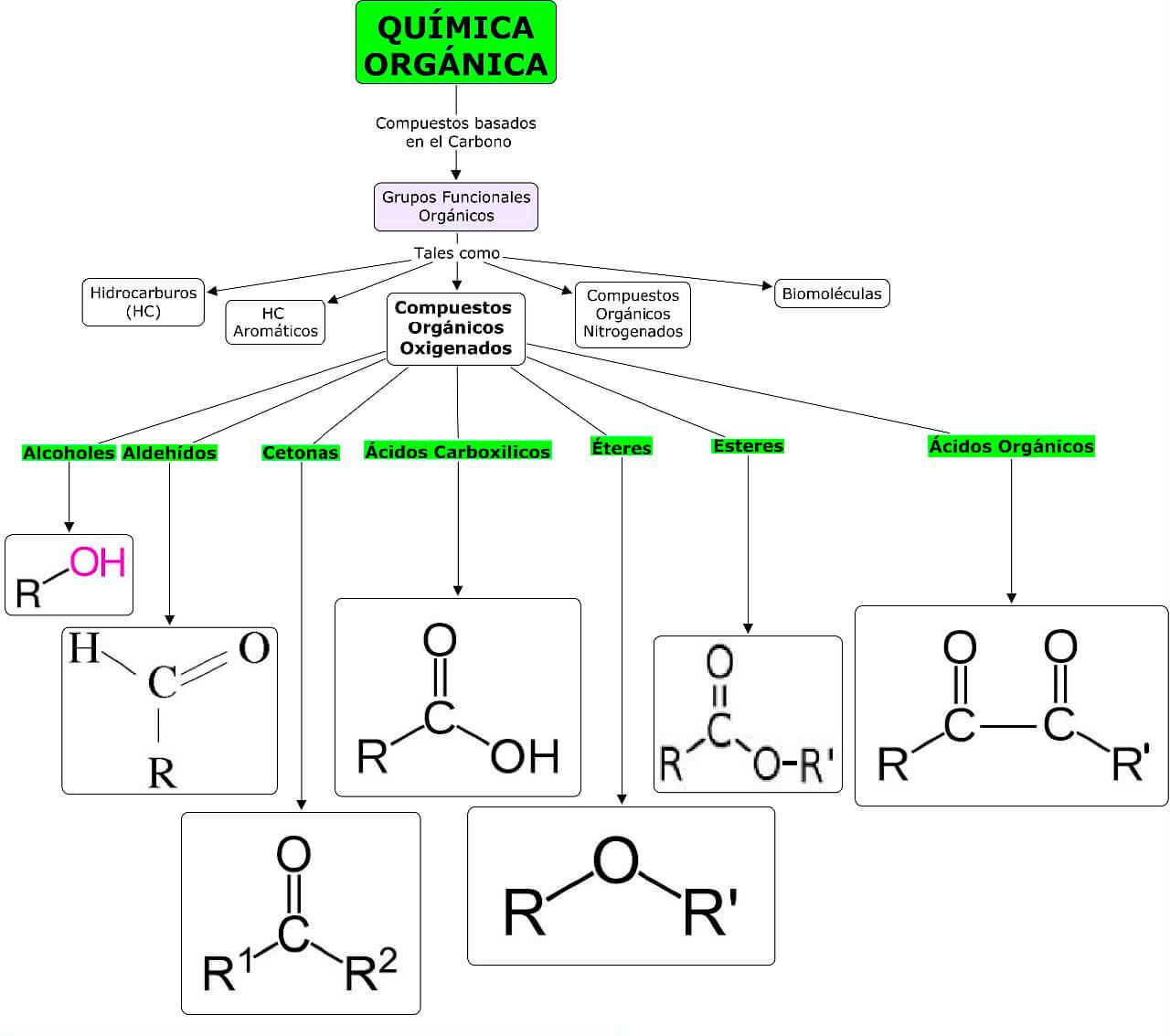 Mapa conceptual grupo funcionales orgánicos