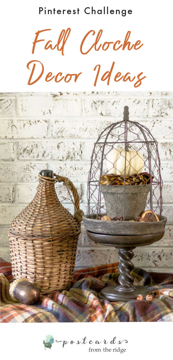fall decor with chicken wire cloche