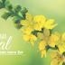 Sistema Floral - o princípio de um novo ser.