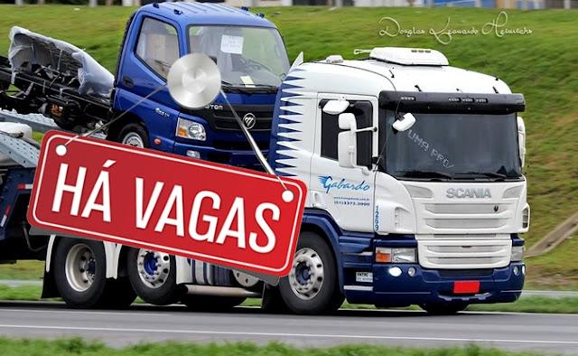 transportadora Gabardo vaga para motorista