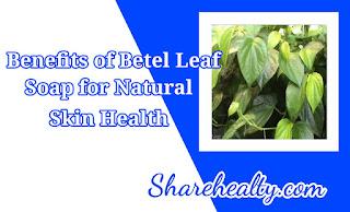 12 Benefits of Betel Leaf Soap for Natural Skin Health