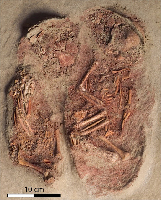 Oldest known identical twins found in 31,000-year-old grave in Austria