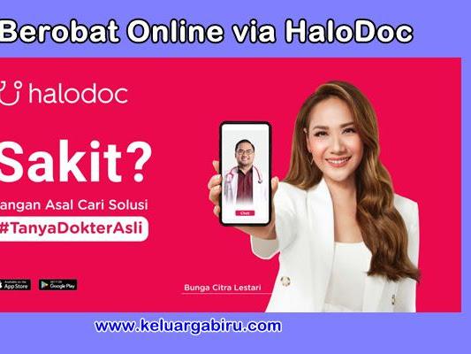 Berobat secara Online dengan HaloDoc