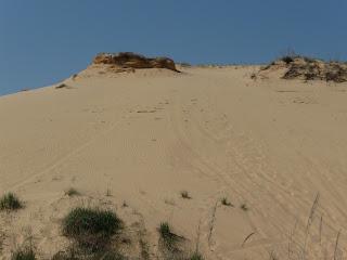 Полупустыня Алешковские пески