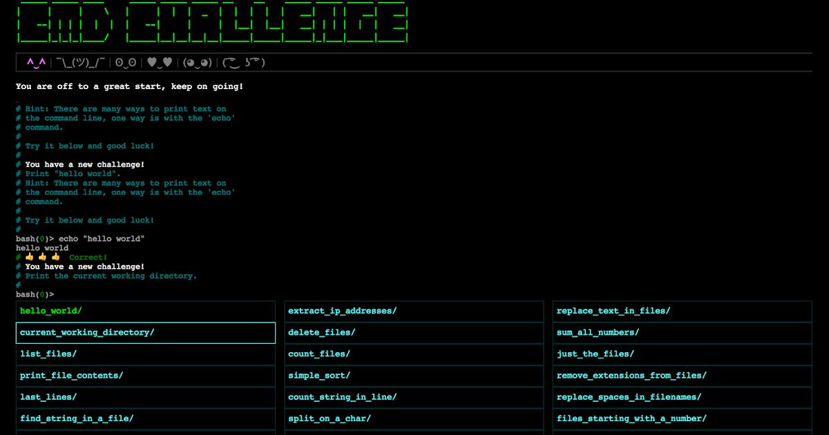 Commandline Challenge (bash) writeup : hackplayers