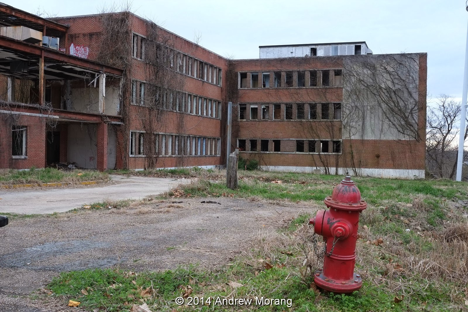 Urban Decay Much Worse Kuhn Memorial Charity Hospital