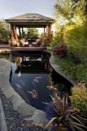 kolam ikan arwana