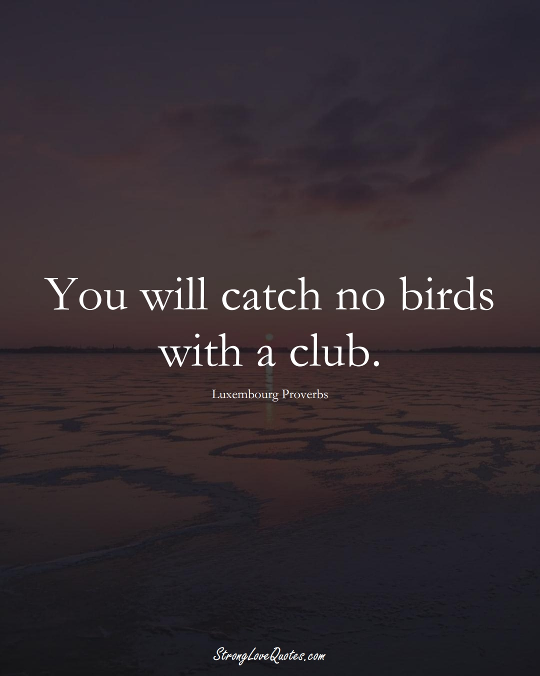 You will catch no birds with a club. (Luxembourg Sayings);  #EuropeanSayings