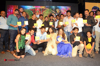 Nanna Nenu Na Boyfriends Telugu Movie Audio Launch Stills  0226.jpg