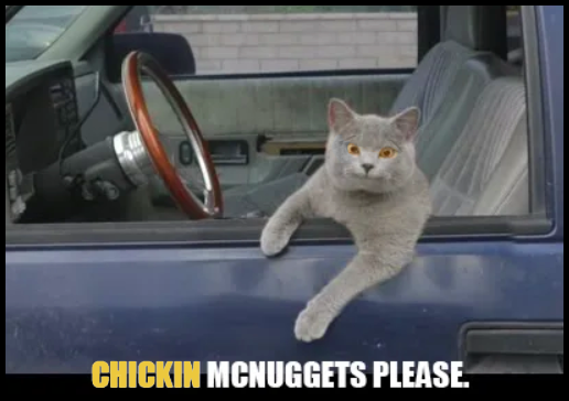 Funny cat acting like human • ''Chickin  Mcnuggets please.''