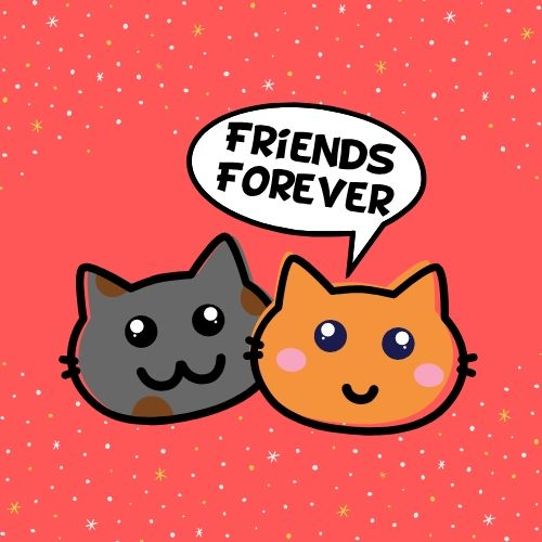 best friends forever photos