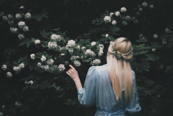 https://www.deviantart.com/nataliadrepina/art/The-dark-garden-612729680