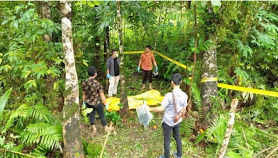 Kabar Berita Terbaru Hari Ini Mayat Laki-laki Ditemukan di Perkebunan Karet di Gunungsitoli