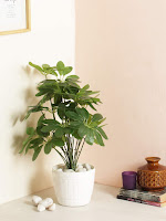 Panchanan Interiors Private Limited - Offering Fourwalls Miniature PVC Artificial Plant without Pot (18 Leaves, 70 cm, Green), Decorative Artificial Plant, Fake ... Plant Height: 65 CM TALL WITHOUT POT