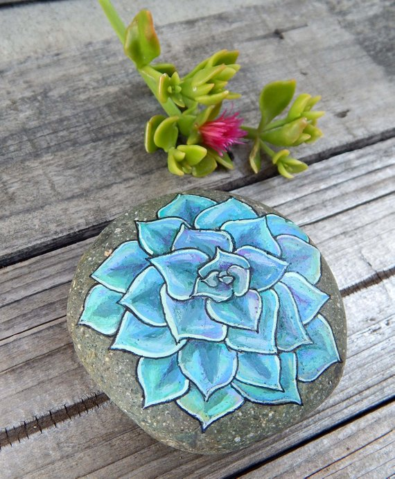 Succulent painted rock