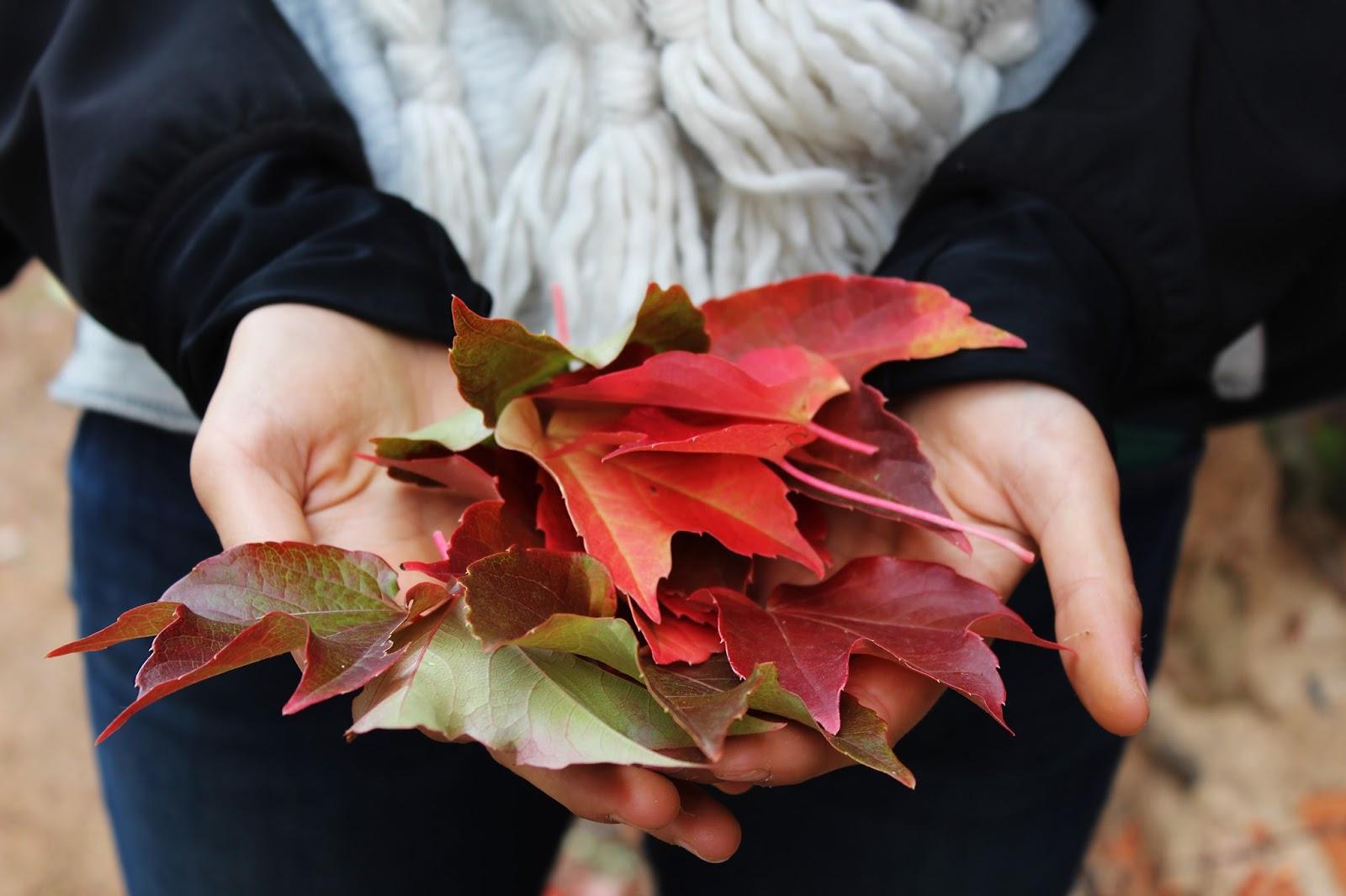 jak oswoić jesień