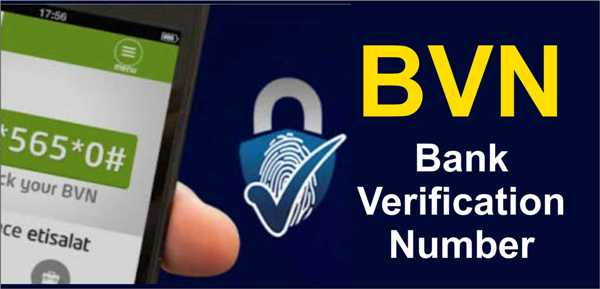 Check bvn code ( MTN, Airtel, Glo & 9Mobile) - TheInfo360