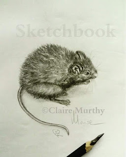 mouse pencil sketch