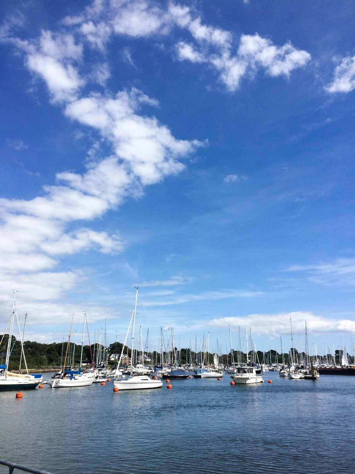 Things to do in Lymington Hampshire, Hampshire blog, things to do in Hampshire, Lymington seafood festival